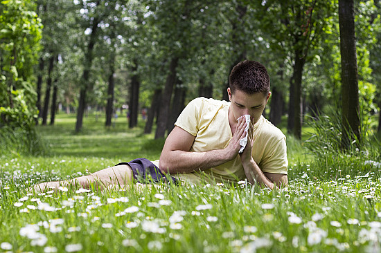Dissolvable tablets don't work for people with severe allergies to grass pollen featured image