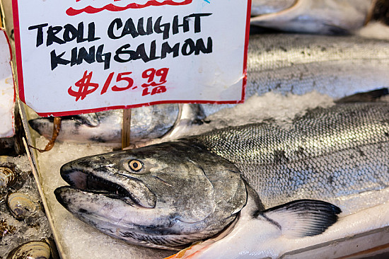 Finding omega-3 fats in fish: Farmed versus wild featured image
