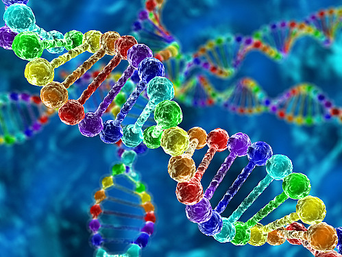 Can genetic testing help determine the best medications for you? featured image