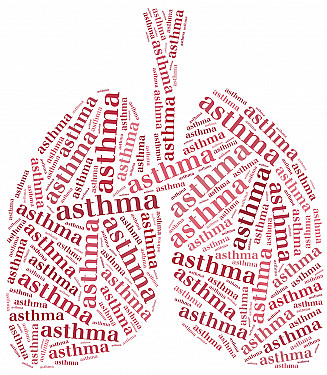 Antibiotics don't speed recovery from asthma attacks featured image