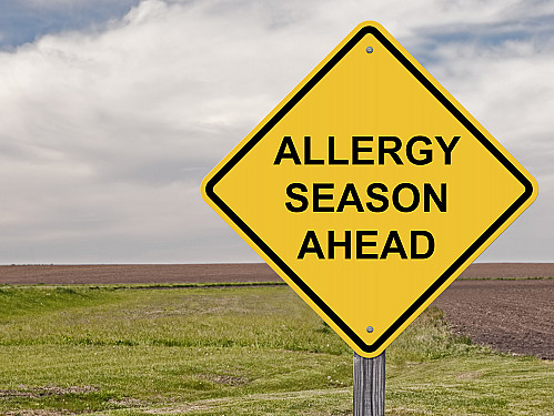 Don't let allergy season catch you off guard featured image