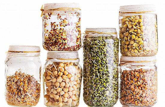 Are sprouted grains more nutritious than regular whole grains? featured image