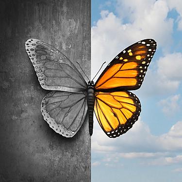Probiotics for bipolar disorder mania featured image