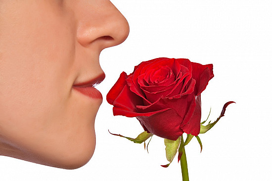 Smell disorders: When your sense of smell goes astray featured image