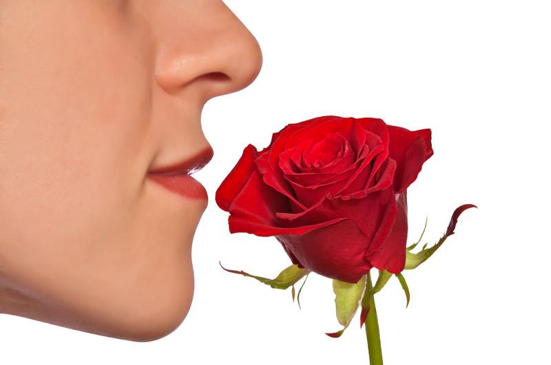 nose-smell-rose
