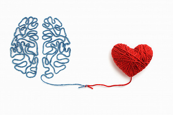 Brain health rests on heart health: Guidelines for lifestyle changes featured image