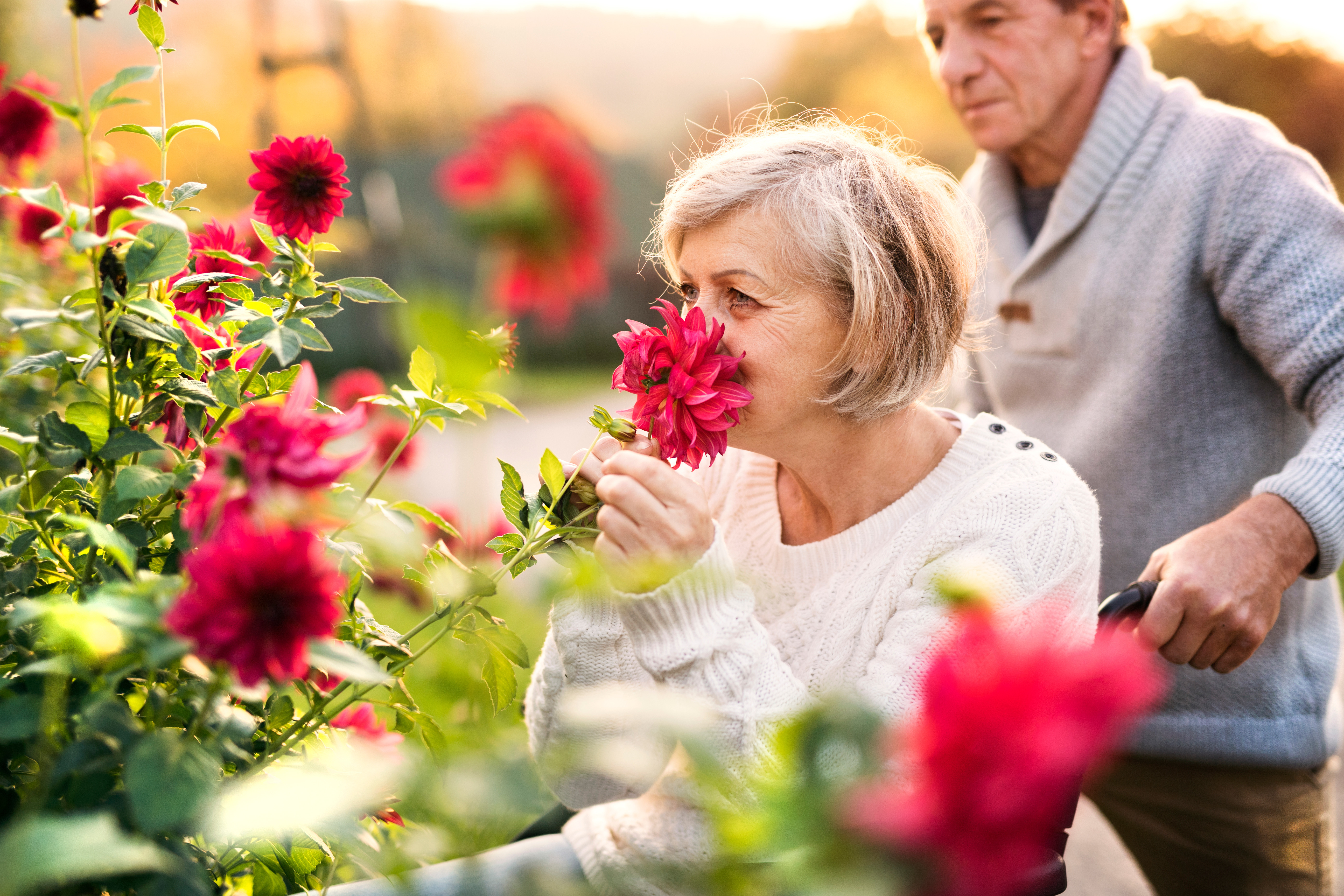 older-woman-in-wheelchair-smelling-a-flower