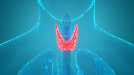 Need to check your thyroid? Maybe not featured image