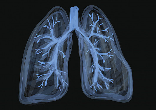 Can vaping damage your lungs? What we do (and don't) know featured image