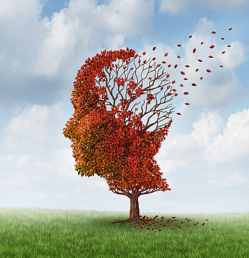 Is there a test for Alzheimer's disease? featured image